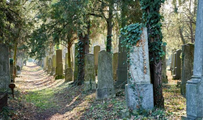Cimitero Monumentale Vienna luoghi da visitare