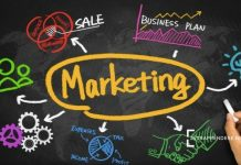 Marketing Plan Esempi