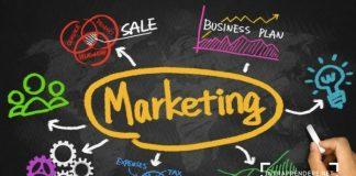 Marketing Plan Esempi