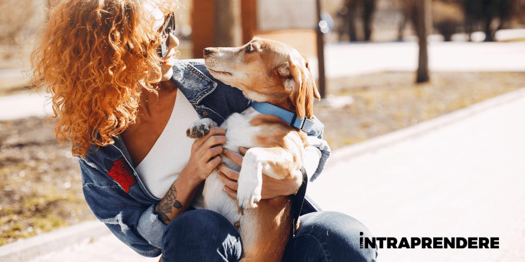 Come e Perchè Aprire una Pensione per Cani in Franchising: Requisiti Richiesti e Vantaggi