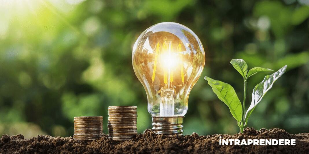 5 Idee di Business Redditizie per Metterti in Proprio nel 2021 [Anche in Franchising]